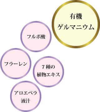 紫輝シャンプー・パックポイント2